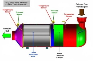 what-is-dpf1